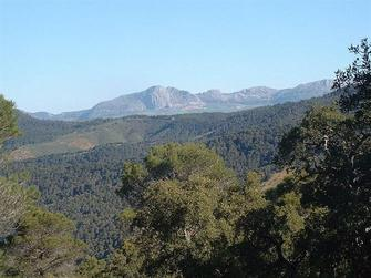 View from the Malaga mountains - Montes de Malaga